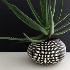 Black and White Pebble Pot Sharon Muir // ANTLER and MOSS