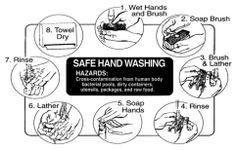 Handwashing Food Safety Training, Health Pictures, Hand Washing, Human Body, Fashion, Moda, Fashion Styles, Fashion Illustrations