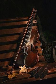 Violin As Perfect Music Background For Wedding Ceremony