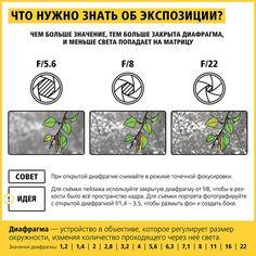 Nikon_info_26