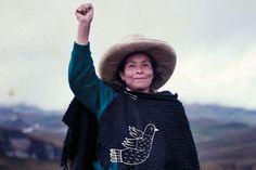Maxima Acuna : la paysanne péruvienne qui lutte contre l'accaparement des terres
