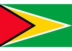 La Bandera de Guyana fue creada en el año 1966 por el estadounidence Whitney Smith muy reconocido por el estudio de los simbolismos patrios. 📗 Flag Colors, Geography, Flags, Symbols, Letters, Saints, World Geography, Flags Of The World, Countries Of The World