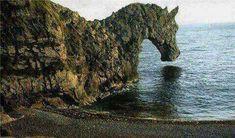 it's a rock(ing) horse!