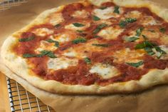 basic pizza dough ( peter reinhart's recipe)