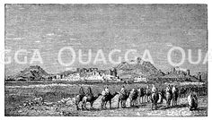 Palmyra. Nach Anne Blunt. Bedouin tribes of the Euphrates. Oondon 1879