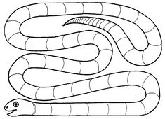... on Pinterest | Snakes, Worksheets and Handwriting practice worksheets