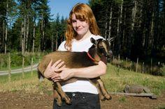 pet goat Types Of Goats, Fainting Goat, Small Goat, Show Goats, Nubian Goat, Goat Care, Boer Goats, Nigerian Dwarf Goats, Showing Livestock