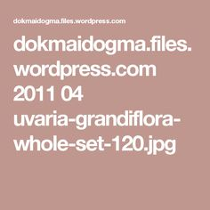 dokmaidogma.files.wordpress.com 2011 04 uvaria-grandiflora-whole-set-120.jpg
