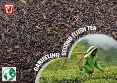 "#Darjeeling is known as the ""champagne"" of teas: if it doesn't come from India's Darjeeling region, you aren't allowed to use the name. That might be why the best Darjeelings taste just like the mountains they were grown on."