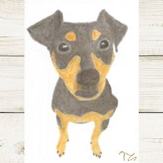 #art #myart #drawing #drawings #mydrawing #graphitedrawing #graphiteart #crayons #instaarts #dog #dogs #pinscher #minpin #mydog