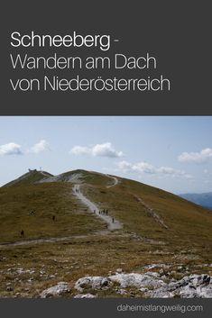 Der nächste 2000er Gipfel ist gar nicht so weit von Wien entfernt - ich war für euch unterwegs am Schneeberg. Austria, Hiking, Travel, Outdoor, Snow Mountain, Mountains, Travel Inspiration, Alps, Traveling