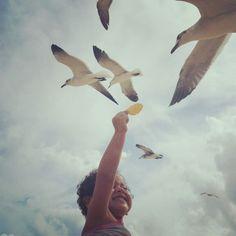 Mi bb alimentando gaviotas :)