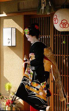 京都の花(宮川町)