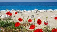 Albania — at dhermi. Visit Albania, Water Resources, Amalfi, Travel Destinations, Tourism, Canon, Travelling, Beautiful, Beach
