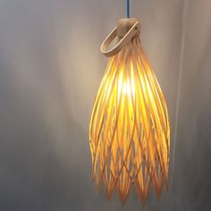 Basketlamp by Juan Cappa