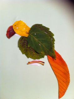 Parrot leaves
