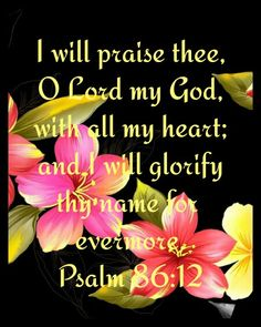 "Psalm 86:12 [KJV] ~ ""I will praise Thee, O Lord my God, with all my heart; and I will glorify Thy name for evermore."""
