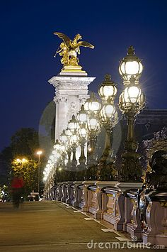 Pont Alexandre III,Paris.  Oh man.... really, really want something fun like one of these lights in our yard!!  WHY are the most simple ones out of our budget!?!?