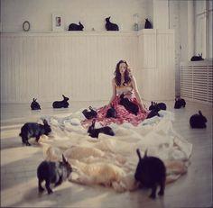 by Anka Zhuravleva Rabbit Rabbit Rabbit, House Rabbit, Funny Bunnies, Cute Bunny, Bunny Bunny, Bunny Rabbits, Adorable Bunnies, Kawaii Bunny, Crazy Cat Lady