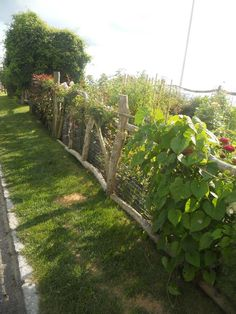 beautiful hand-hewn fence at garden in Rhode Island