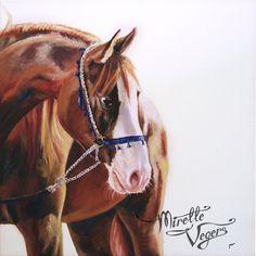 Nadir. Oilpainting of an arab horse by Mirelle Vegers. Originally based on a photograph by Nikki de Kerf. #equine #art #artwork