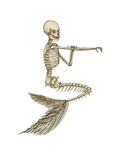 Mermaid Skeleton Image, Mermaid Image, Skeleton Image, Black White Mermaid Skeleton Cutout, Vintage Mermaid Template, Halloween Template by EerieBeth on Etsy