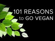 The 22 Best Vegan Documentaries to Inspire You