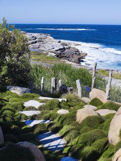 Nice 36 Elegant Coastal Gardens Design Kdeas That Like A Paradise. Seaside Garden, Coastal Gardens, Beach Gardens, Garden Oasis, Beach Landscape, Landscape Design, Landscape Steps, Outdoor Living, Indoor Outdoor