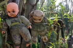 Xochimilco - Island of the dolls