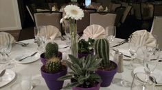 Arizona wedding in Indiana. Gorgeous hand painted terra cotta pots filled with cacti and succulents. Each table included a bud vase with beautiful gerber daisies