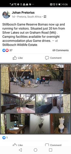 Plus Games, Pretoria, Game Reserve, Silver Lake, Up And Running, South Africa, Wildlife, Camping, Campsite
