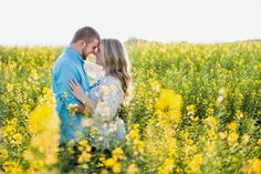 Engagement session in a canola field. by Claire Diana Photography Field Engagement Photos, Engagement Session, Couple Photography, Photography Poses, Engagement Photography, Canola Flower, Rapeseed Field, Canola Field, Mustard Flowers