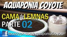 Parte 02 - Cama D'água para as Lemnas, Lentilha d'água - Aquaponics Syst...