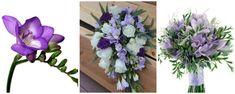 frezii mov si lila - flori in culoarea anului 2018: ultraviolet Floral Wreath, Wreaths, Plants, Blog, Decor, Floral Crown, Decoration, Door Wreaths, Blogging