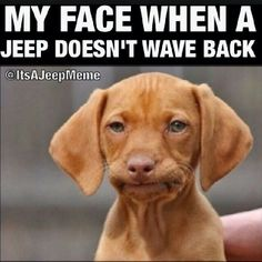My face when a Jeep doesn't wave back | It's a rule guys, but it's alright if you occasionally forget to wave | Jeep Meme | Puppy Face | Jeep Life