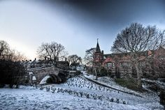 Snowy Dell