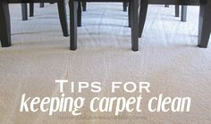 How to keep carpet clean & get stains out.