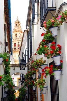 Rincones de Andalucía: Córdoba / Places of Andalusia: Córdoba