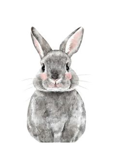 """Baby Animal Rabbit"" by Cass Loh in beautiful frame options and a variety of sizes."