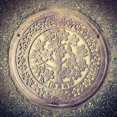 【minamu4545alchemist】さんのInstagramをピンしています。 《今日のマンホールGO。 井川町の蓋。 描かれているのは町の花・サクラ。 ザ・サクラ蓋といわんばかりのサクラ一本推しのスタンダードなデザインです。 廻りをサクラの花で圍う此のデザインもザ・長島蓋なデザインですね。 撮影場所は、まるで女の子の名前のような萌え驛名の『井川さくら』の驛前にて。此の驛は名前が氣にいり高3の時に一度行ってみた記憶があります。オシャレなデザインの驛舎でした。 #manhotalk #manhole #manholecover #manholejp #manholestagram #manholeunited #cooljapan #squircle #art_on_the_ground #sewerage #マンホール #まんほーる #マンホールの蓋 #マンホール倶楽部 #蓋 #cover #下水道 #デザインマンホール #ご当地 #秋田県 #南秋田郡 #井川町 #サクラ #さくら #桜 #cherryblossoms #sakura #櫻蓋 #井川さくら #長島鋳物》