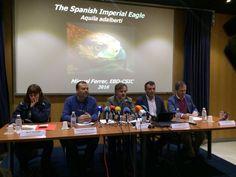 El águila imperial ibérica, en peligro de extinción, anida, por primer vez, en la campiña jiennense