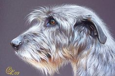 Irish Wolfhound, but profile looks like like Lucy to me!