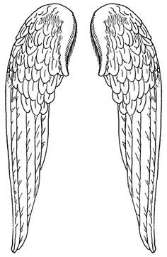 Dragon wing pattern. Use the printable outline for crafts ...