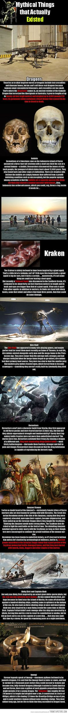 Funny pictures about Mythical creatures that actually existed. Oh, and cool pics about Mythical creatures that actually existed. Also, Mythical creatures that actually existed. All Meme, Wtf Fun Facts, Random Facts, Creepy Facts, Interesting History, Interesting Facts, The More You Know, History Facts, Oral History