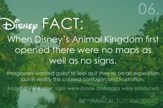 Disney fun fact - what an adventure! Stupid tourists ruining it!