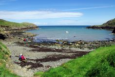 Porthsychan beach, nr Strumble head, Fishguard. Good for swimming. 15 miles / 29 mins north, can also see seals.