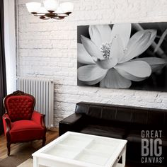 "Harness some flower power with ""Black And White Flower II"" by Dream On Photography. Available at GreatBIGCanvas.com."