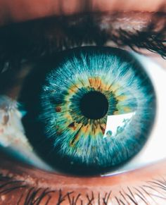 Turquoise eyes with a core of gold.- Turquoise eyes with a core of gold. Turquoise eyes with a core of gold. Gorgeous Eyes, Pretty Eyes, Cool Eyes, Blue Eyes Aesthetic, Turquoise Eyes, Eye Close Up, Realistic Eye Drawing, Human Eye, Eye Photography