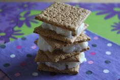 Graham Cracker Ice Cream Sandwiches by Jessica Seinfeld. I MADE THESE ...