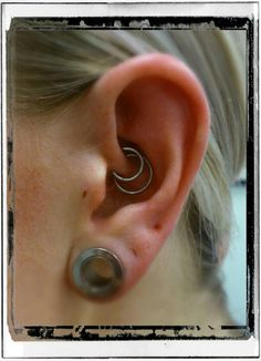 Double Daith piercing and stretched lobe on a beloved regular in Forevermore Today! Daith Piercing, Tragus, Ear Piercings, Stretched Lobes, Forward Helix, Stretches, Earrings, Ears Piercing, Ear Piercing
